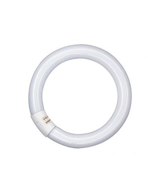 Лампа люминесцентная кольцевая Osram L 22 W/827 C T9 G10q, 216mm - фото 27228